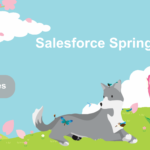 Salesforce Spring '20 Release Highlights: 9 Key Features